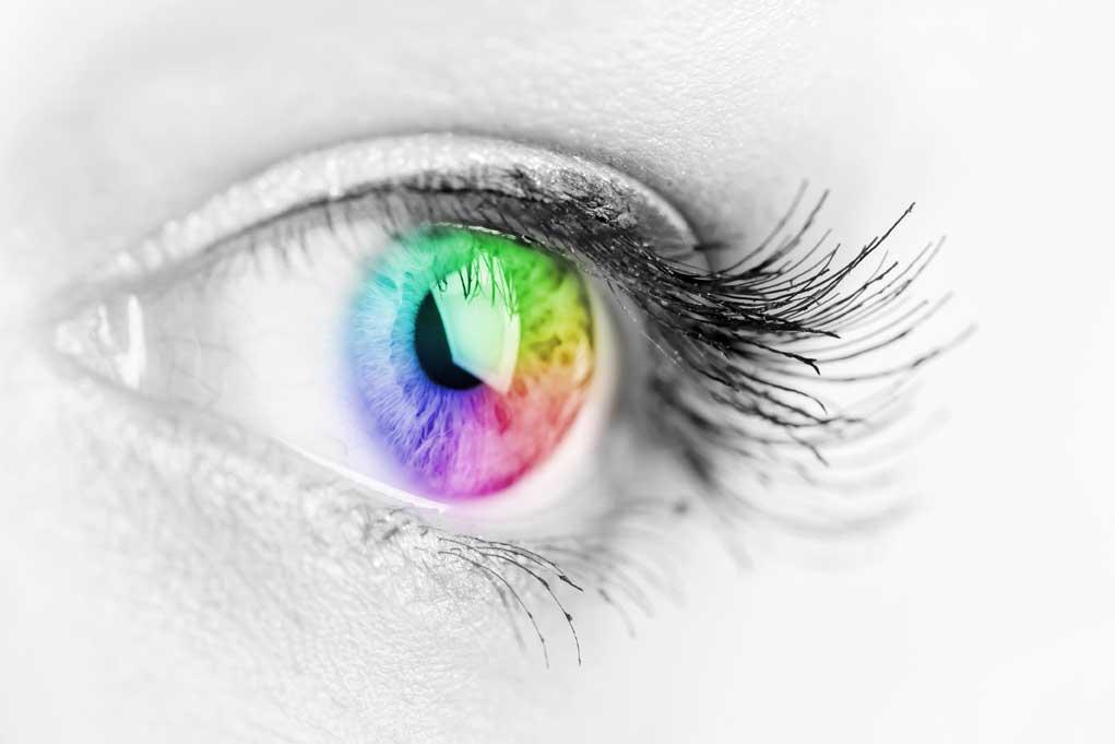 Vision Loss, Glaucoma & Pre-glaucoma