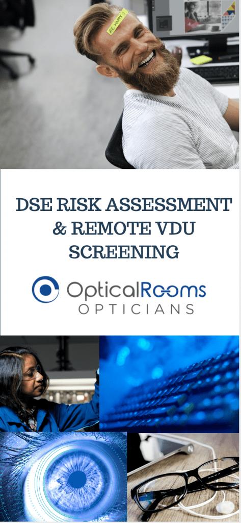 DSE Risk Assessment